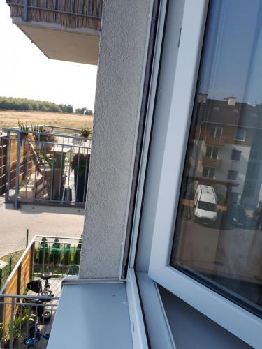 Gdańsk moskitiera rolowana pionowa